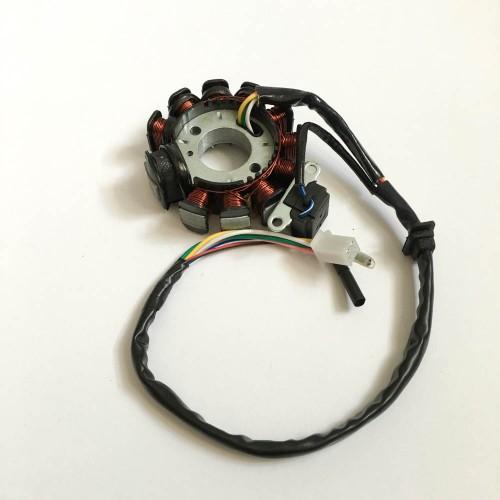 видов пауков фото генератора на скутер омакс кидди картон загрунтованный